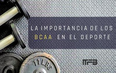 LA IMPORTANCIA DE LOS BCAA EN EL DEPORTE